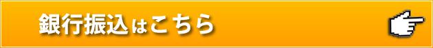 fs-button-2b